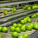 Are Ultraviolet Lamps Part of Your Food Safety Program?