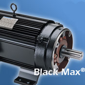 Custom upgrade by ibt for Marathon black max motors